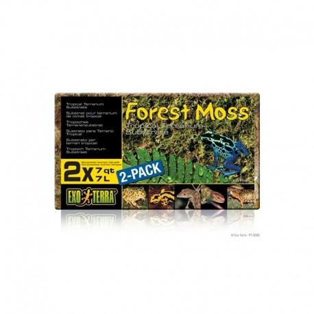 Sustrato Natural Forest Moss EXO TERRA ( MUSGO PRENSADO )
