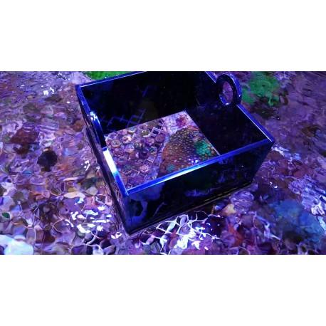 Visor para ver corales