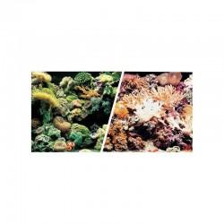 Fondo Dobles Decorativo Marino/Arrecife 45 cm x 15m