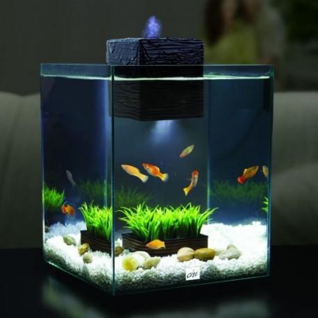 Fluval chi ii mini acuario 19 litros acuarios hd for Como hacer un criadero de peces en casa
