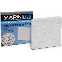MARINE PURE PLATE 20x20x2,5 cm